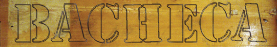 bacheca banner